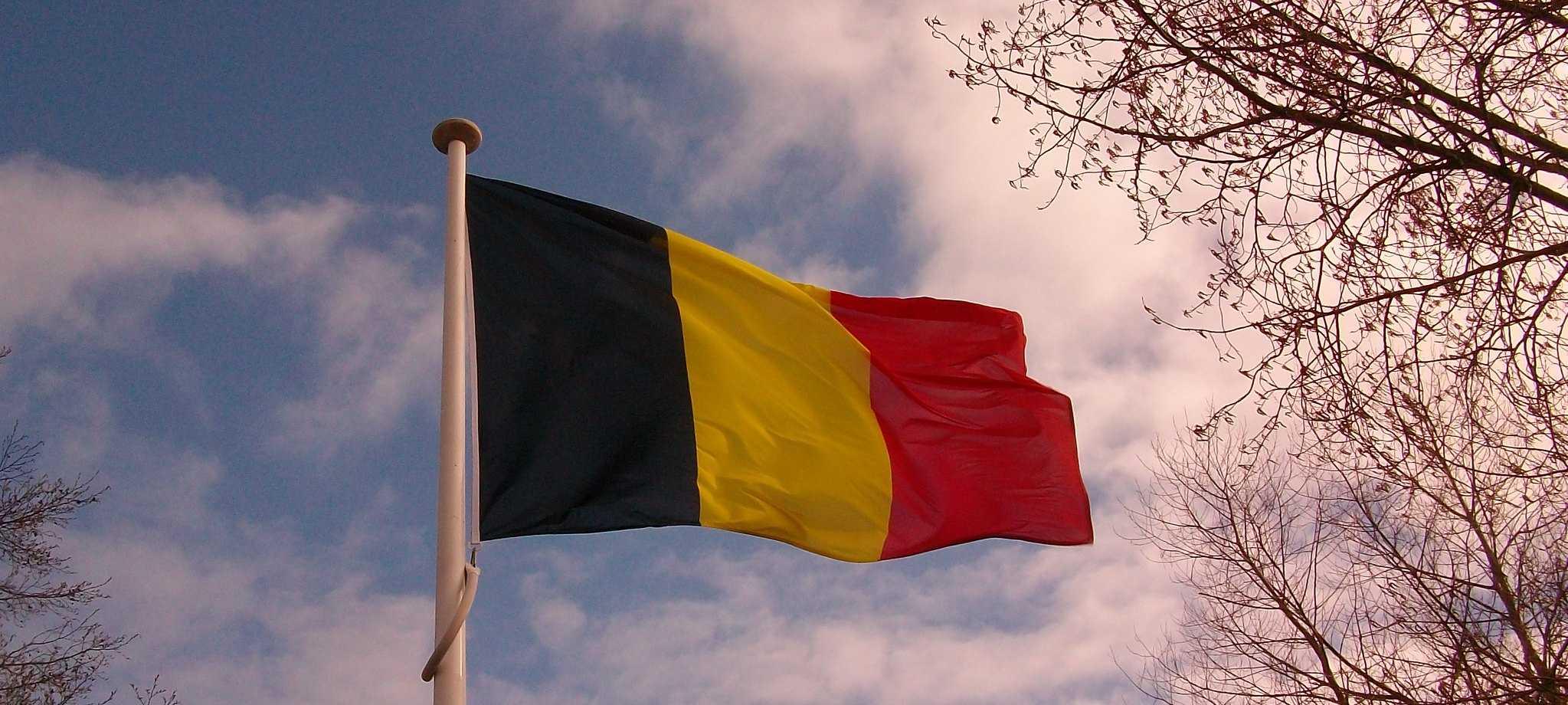 Бельгийская лотерея lotto (6 из 45)